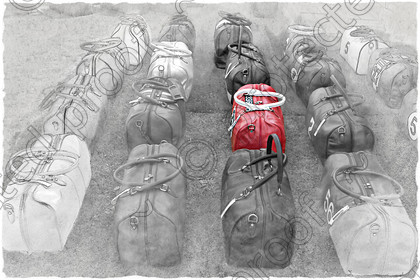 Bags in Progress 